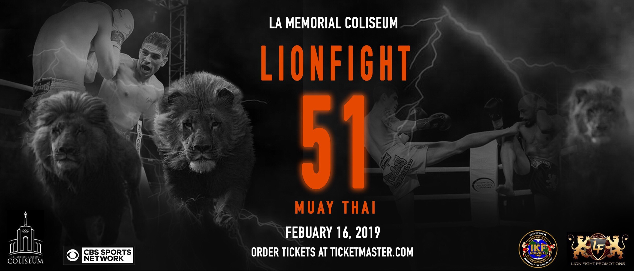 LION FIGHT 51